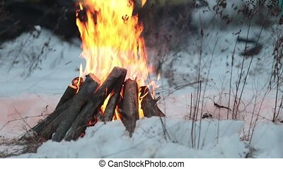 Evening bonfire in the snow in the forest