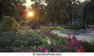 Evening City Park
