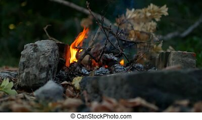 Evening fire in the campaign. Summer evening.