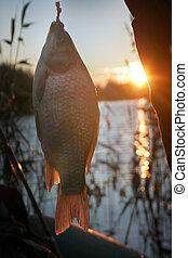 evening glow on a fishing at sunset. - XIAOYI DIGITAL CAMERA