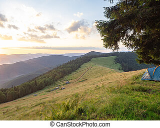 Evening in Carpathians mountains at summer, west Ukraine....