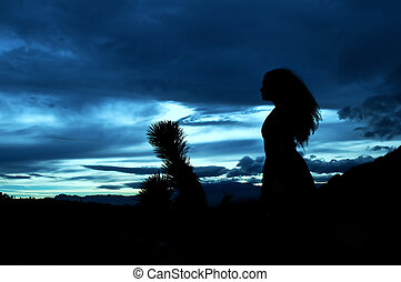 Evening in the desert (silhouette )