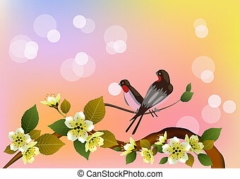 Evening in the garden blooming cherry and birds sing