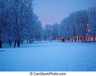 evening in the Park in winter, Moscow