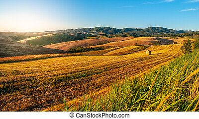 Evening in Tuscany. Hilly Tuscan landscape on sunny summer evening