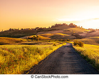 Evening landscape of Tuscany with curvy aspalt road, Italy
