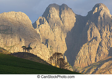 Evening light on the Drakenstein Mountains, near Stellenbosch South Africa.
