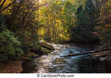 Evening light on the Gunpowder River in Gunpowder Falls State Park, Maryland.