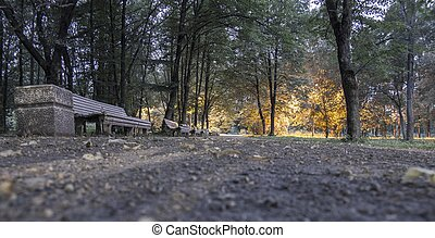 evening Park
