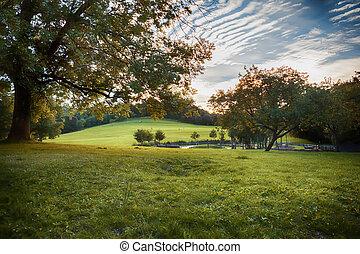 evening park  - people in evening park  in Bristol area