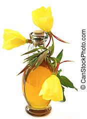 Evening primrose oil - Evening primroses with oil bottle on ...