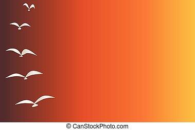Evening Sky with Birds