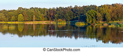 Evening summer lake landscape.