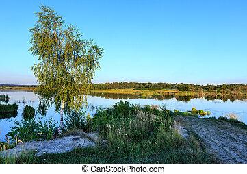 Evening summer lake landscape.