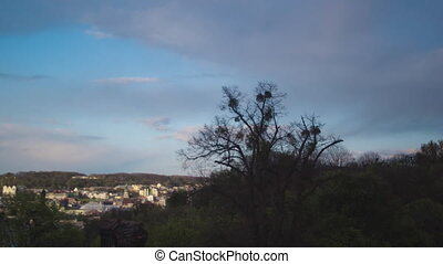 Evening time lapse on the city of Lviv