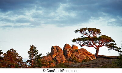 Evening Timelapse With Rock And Tree