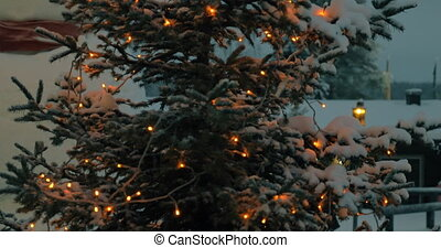 Evening view of Christmas tree with lights
