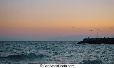 Evening waterscape with wavy sea, rocky pier and flying gull...