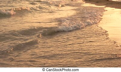 Evening waves of the sea.