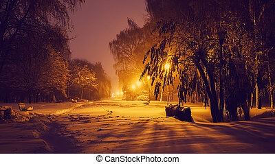 Evening winter landscape in the park. snow covered frosty trees in a night city park