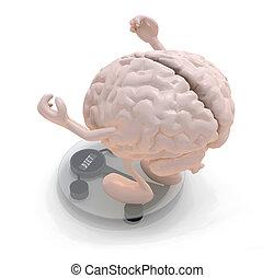evenwicht, op, armen, hersenen, menselijk, benen