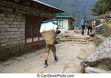 Mountaineers and porters trek to Sagarmatha National Park, Himalayas, Nepal.
