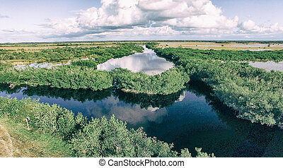 everglades, フロリダ, 航空写真, 泥地, 光景