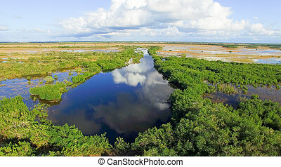 Everglades at sunset, Florida - Aerial view