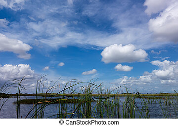 Everglades National Park in Florida is the largest...