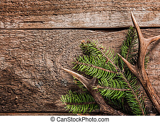 Evergreen Branch and Deer Antler on Wooden Surface - High...