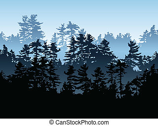 Evergreen Forest  - Silhouette of an evergreen forest.