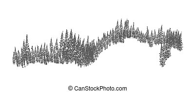 Evergreen forest or woodland landscape with silhouettes of coniferous trees growing on hills. Hand drawn natural monochrome decorative element isolated on white background. Vector illustration.