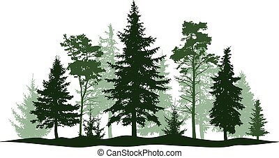 Evergreen forest pine, tree isolated. Park, alley Christmas tree. Vector illustration. Landscape of isolated trees