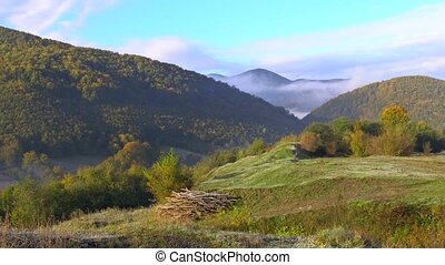 Evergreen forests on mountain slopes enveloped in low lying...