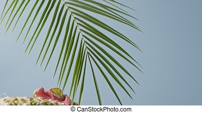 Evergreen palm leaves with natural exotic fruits composition...