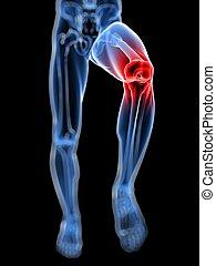 evidenziato, tocchi col ginocchio articolazione