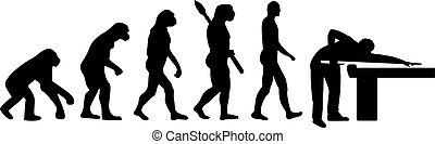 evolução, bilhar, piscina
