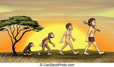 evolução, de, homem