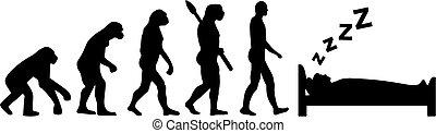 evolução, dormir, homem