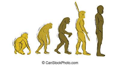 evolução, hand-draw