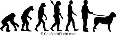 evolución, darwin, mastín