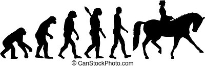 evolución, jinete, dressage