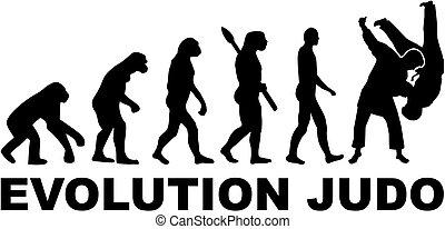 evolución, judo