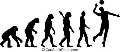 evolución, voleibol