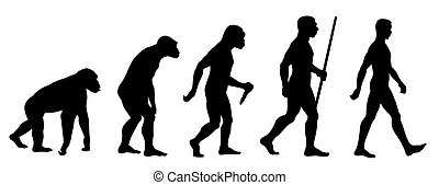 Abstract vector illustration of an evolution line