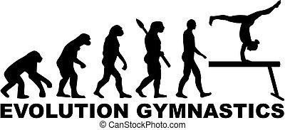 Evolution gymnastics with balance beam