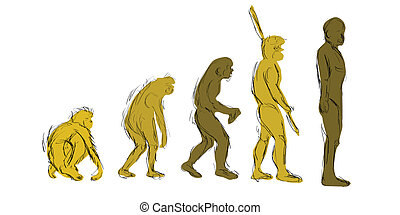 Evolution Hand-Draw
