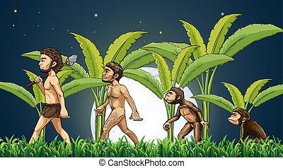 Evolution of man - Illustration of the evolution of man