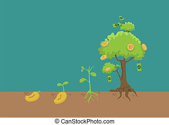Evolution of money tree