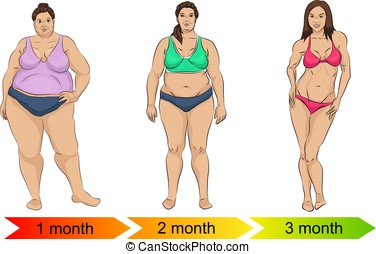 Evolution of the female body from fat to thin as a result of diet or exercise